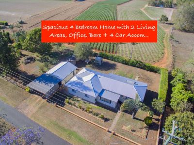 BIGGER THAN YOU'D EXPECT! 4 BEDDER, 2 LIVING, STUDY & 4 CAR ON 1,027M2 IN QUIET SPOT!