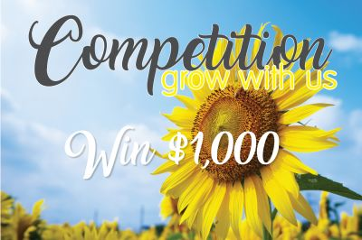 Spring - Competition Grow With Us
