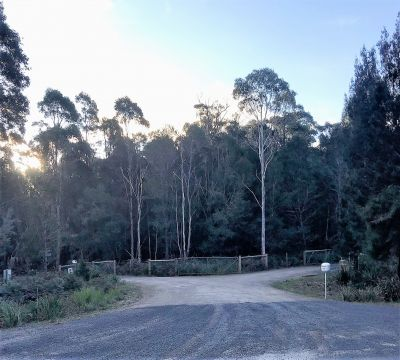 Build Your Dream Home Among The Gum Trees