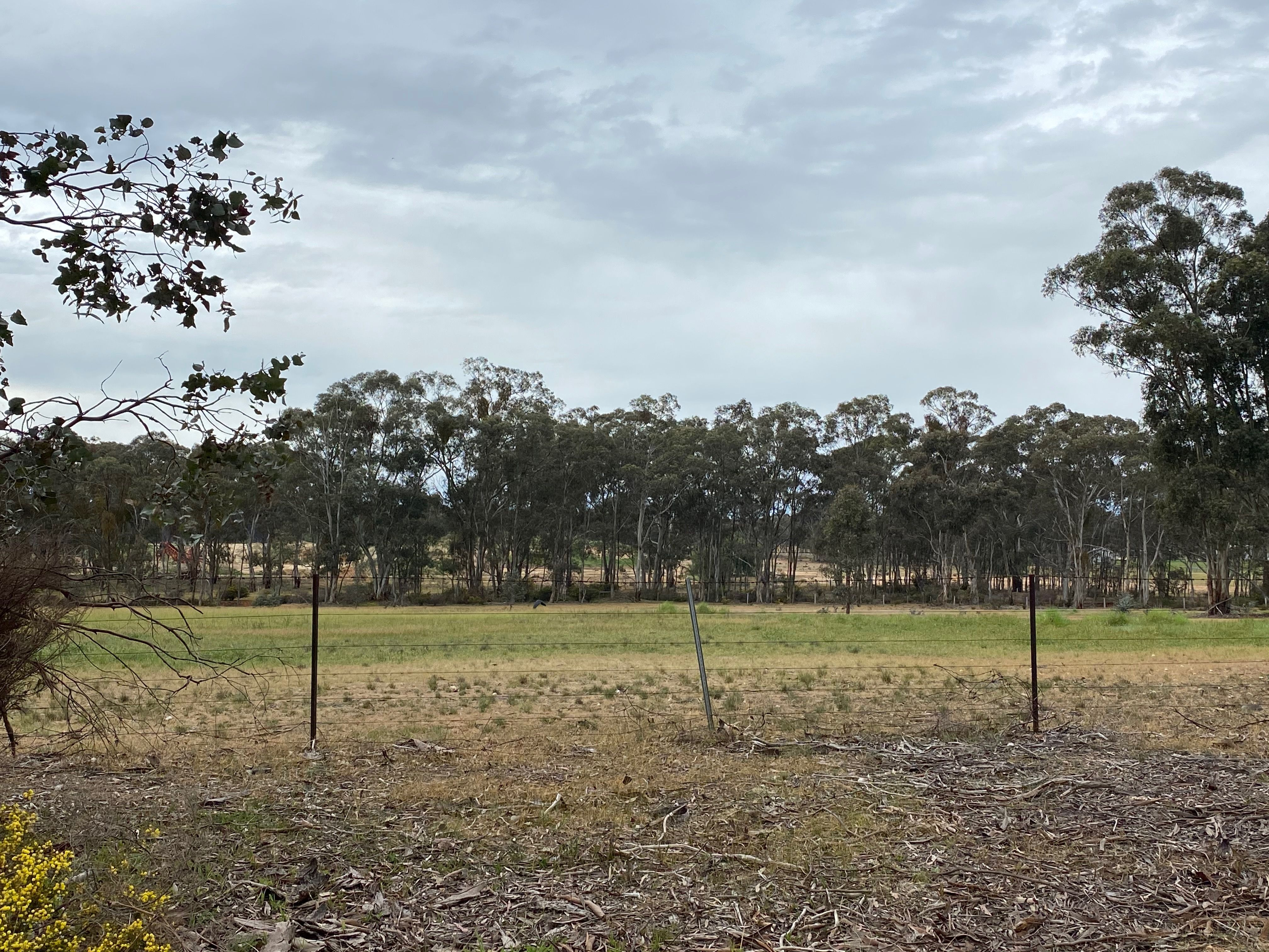 Lot 7/ Denyers Road, Bowenvale VIC 3465