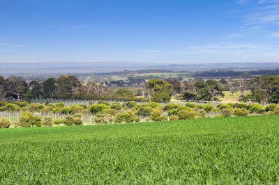 Ponderosa    27.52 ha - 68 acres approx.