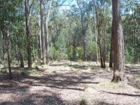 Lot 415 Millingandi Ridge Road Millingandi, Nsw