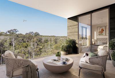 The Azure  Kingfisher Grove