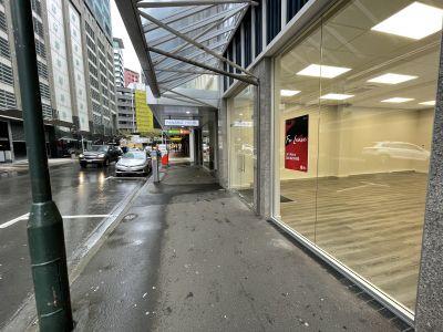 G.2/20 Panama Street, Wellington Central