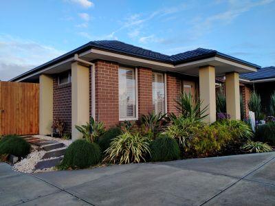Modern Single-Level Corner Home with Park Views...