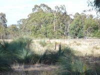 143 Acres of Grazing & Bushland