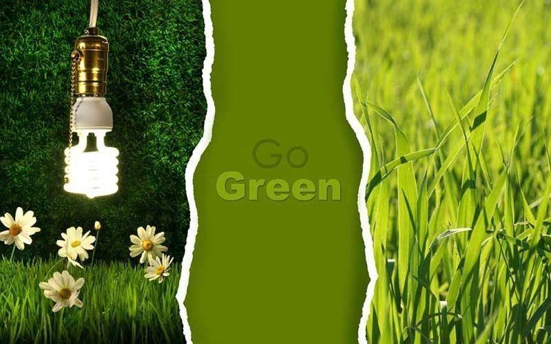 Eco Friendly Oils & Paints Distribution Business