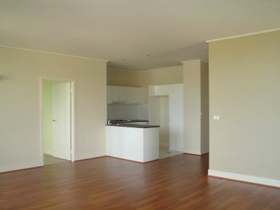 Parkview, 2 Macarthur Rd: Stylish, Spacious & Full Of Light!