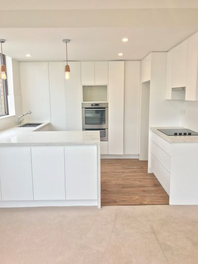 Sunny & Spacious Newly Renovated 2 Bedroom Apartment