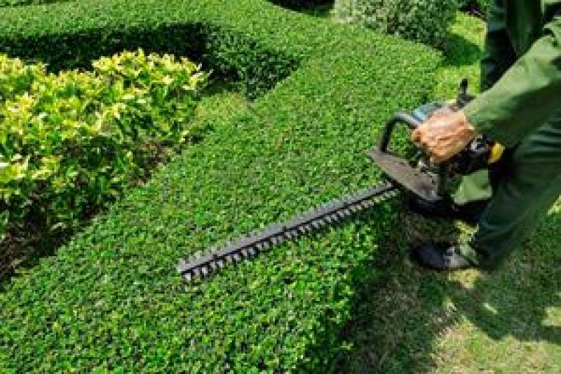 7K NET profit per week !! Garden maintenance business, great team in place.