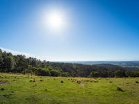 Lot B Omaru Lane Bald Hills, Nsw