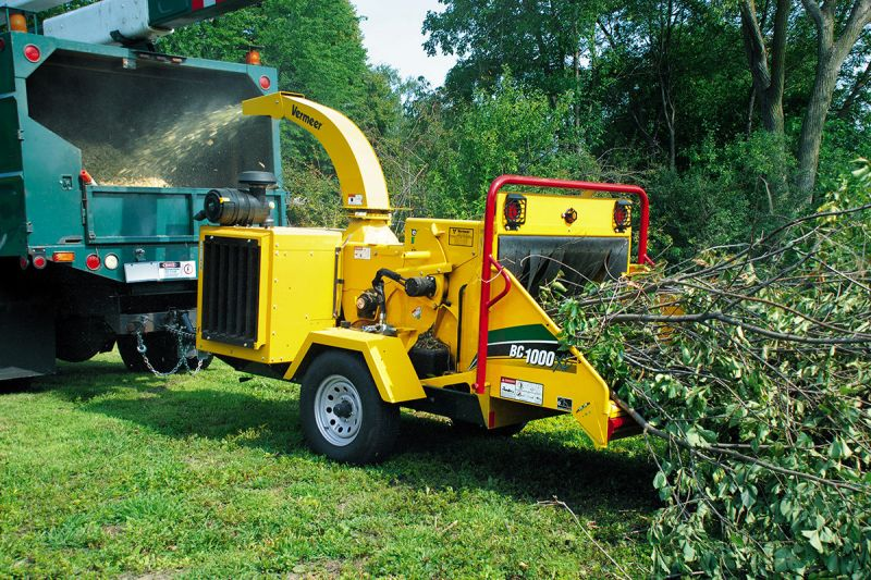3 day a week tree and stump removal business