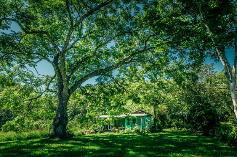 155 Acres, House + Studio, Pristine River Frontage, Peaceful, Paradise