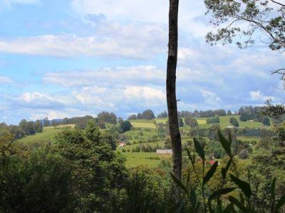 Elevated Rural Land