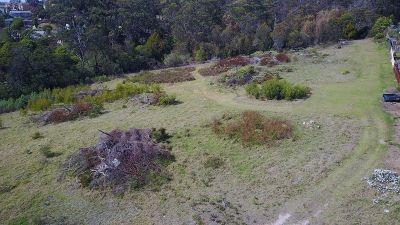Wildewoods Land