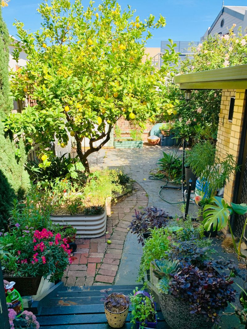Private Rentals: 8 Arthur Street, South Yarra, VIC 3141