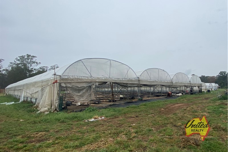 CALLING ALL GROWERS - GREENHOUSES & PUMPING RIGHTS