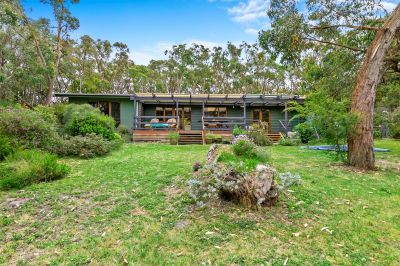 FAMILY LIFE ON THE EDGE OF THE BEAUTIFUL OTWAYS