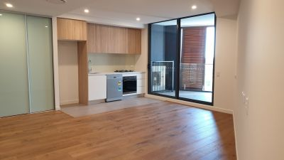 ACCESSIBLE, NEAR NEW ONE BEDROOM WITH CITY VIEWS