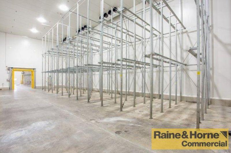 Fully Palletized, Docks, Bays + 10m Internal Height