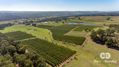 1220 Donnybrook-Boyup Brook Road, Lowden