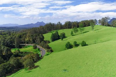 Lot 331 Kyogle Road, Lillian Rock