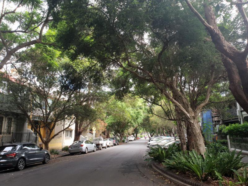 3/53 Great Buckingham Street, Redfern