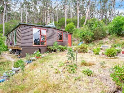 Off Grid Cabin on 30 Acres