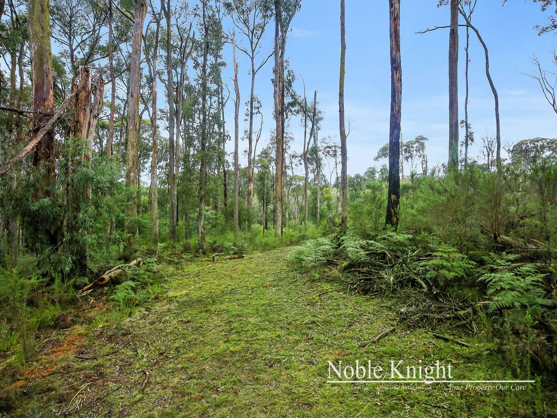 2/53 Banksia Court Castella