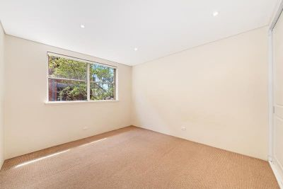 3/7 The Avenue, Randwick