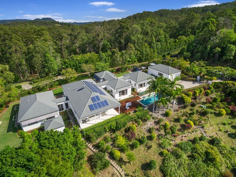 Style, sophistication and privacy amongst the treetops
