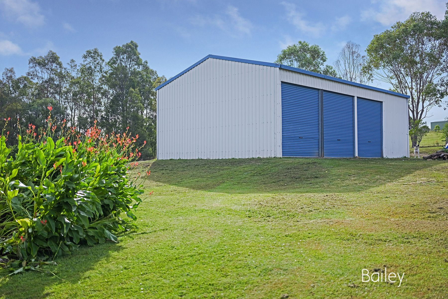 8 Martin View Court, Singleton