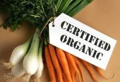 Online Organic Fruit, Veg and Health Products - Ref: 14226