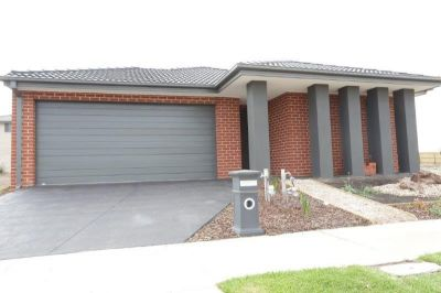 A Lifestyle to Enjoy - Brand New Single Level 4 Bedroom House in a Great Location!