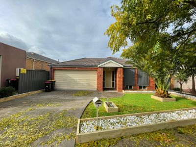 Stunning Renovated family home !!!