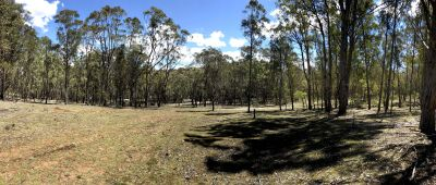 UPPER GROWEE, NSW 2849