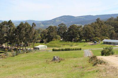Small Acreage Pasture