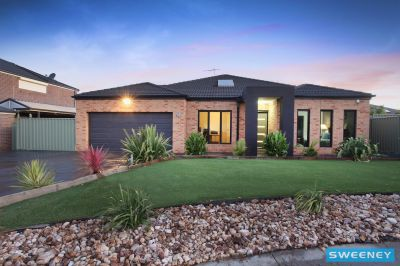 Stylish & Modern In A Quiet Court Locale!!