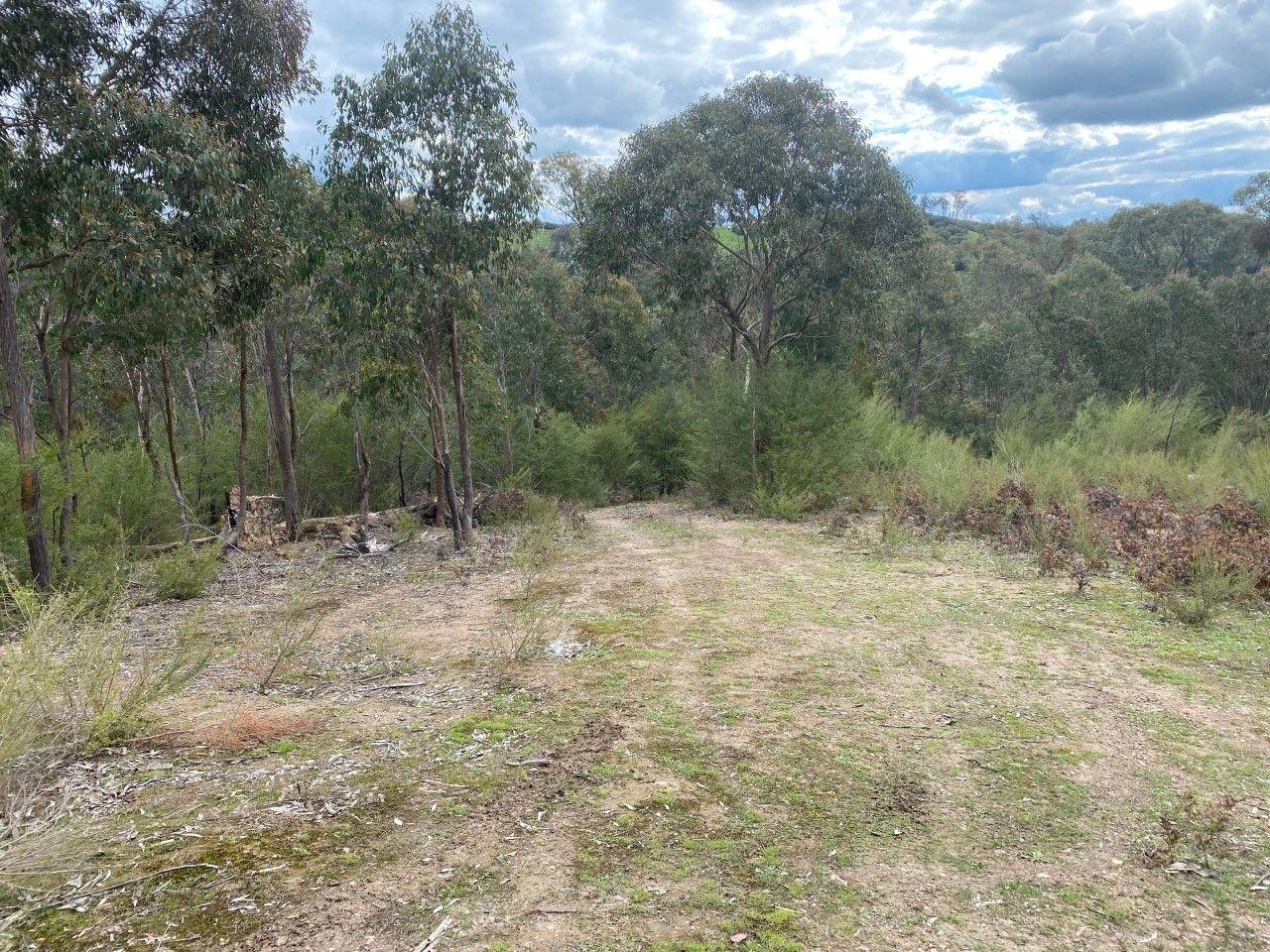 45 Malaraway Road Glenburn
