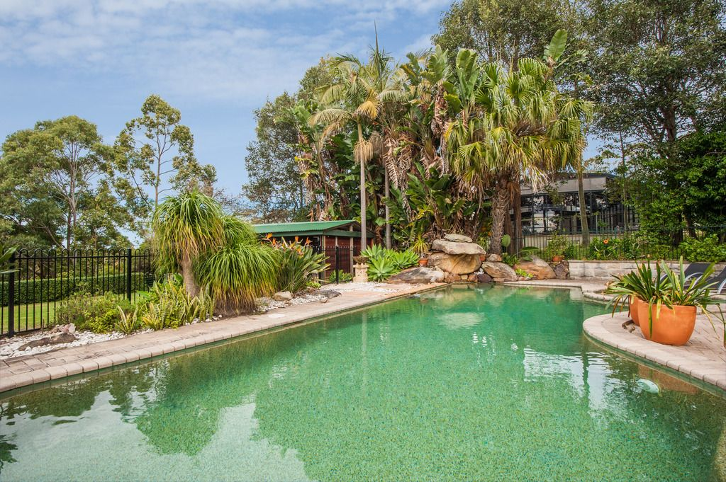 315 McCarrs Creek Road Terrey Hills 2084