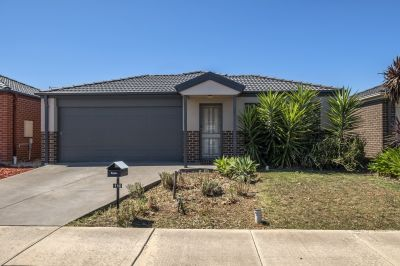 BARGAIN BUYING IN BROOKFIELD