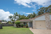 Rainforest setting + solar power!