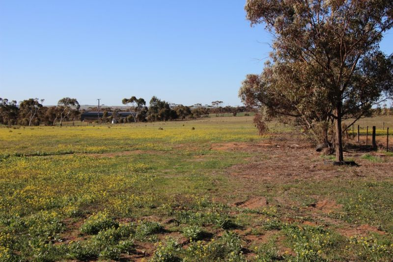For Sale By Owner: Lot 91 Ridley Road, Mannum, SA 5238