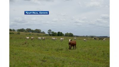 Lot  2 Hillyards Road, Kyogle