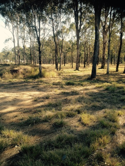 WATTLE CAMP, QLD 4615