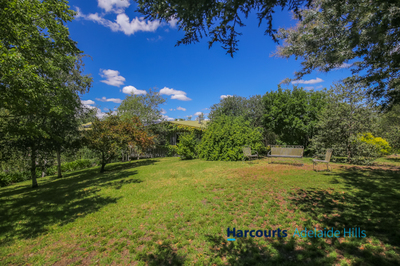 'Moonlight Valley' 20 Acres - Substantial Home - Extensive Shedding - Good Water - Business Opportunity
