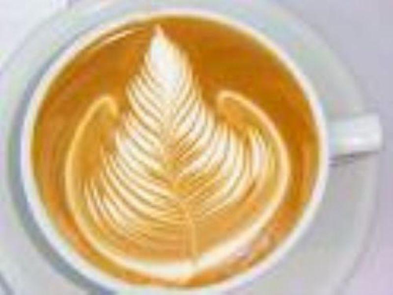 Cafe / Coffee shop