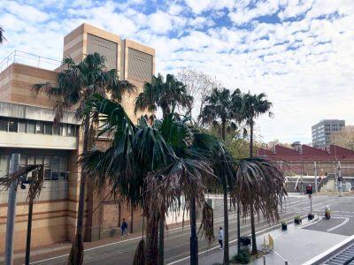 3018/65 Tumbalong Boulevard, Sydney