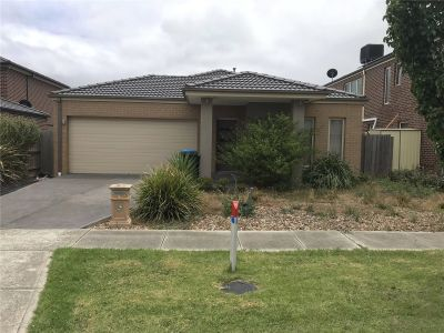 FIRST CLASS TENANT WANTED! Four Bedroom Home to Relax!