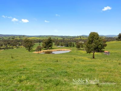 Rural Farmlet on 115.8 Acres (approx.)